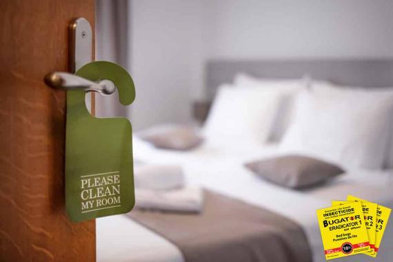 Punaises de lit dans un hôtel - Bugator