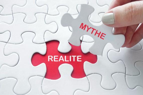 Mythe et réalité sur les punaises de lit - Bugator