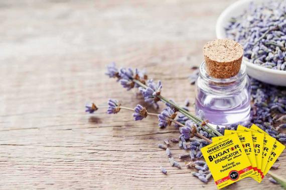 huile essentielle pour punaise de lit - Bugator
